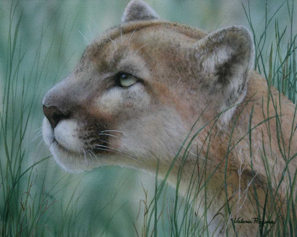painting of cougar face
