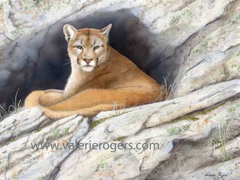 painting of cougar in mt den