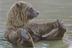Acrylic painting of grizzly bear