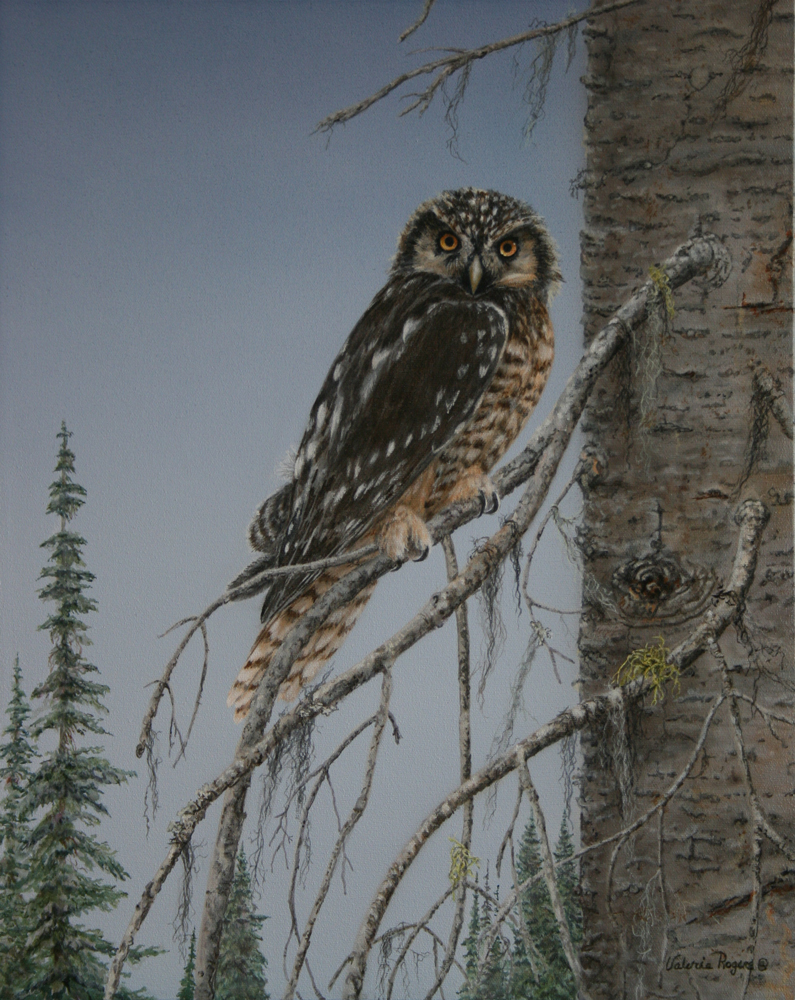 Owl painting by Valerie Rogers
