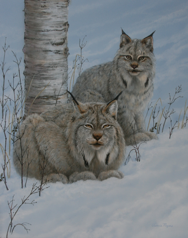 Painting of two lynxes in the snow