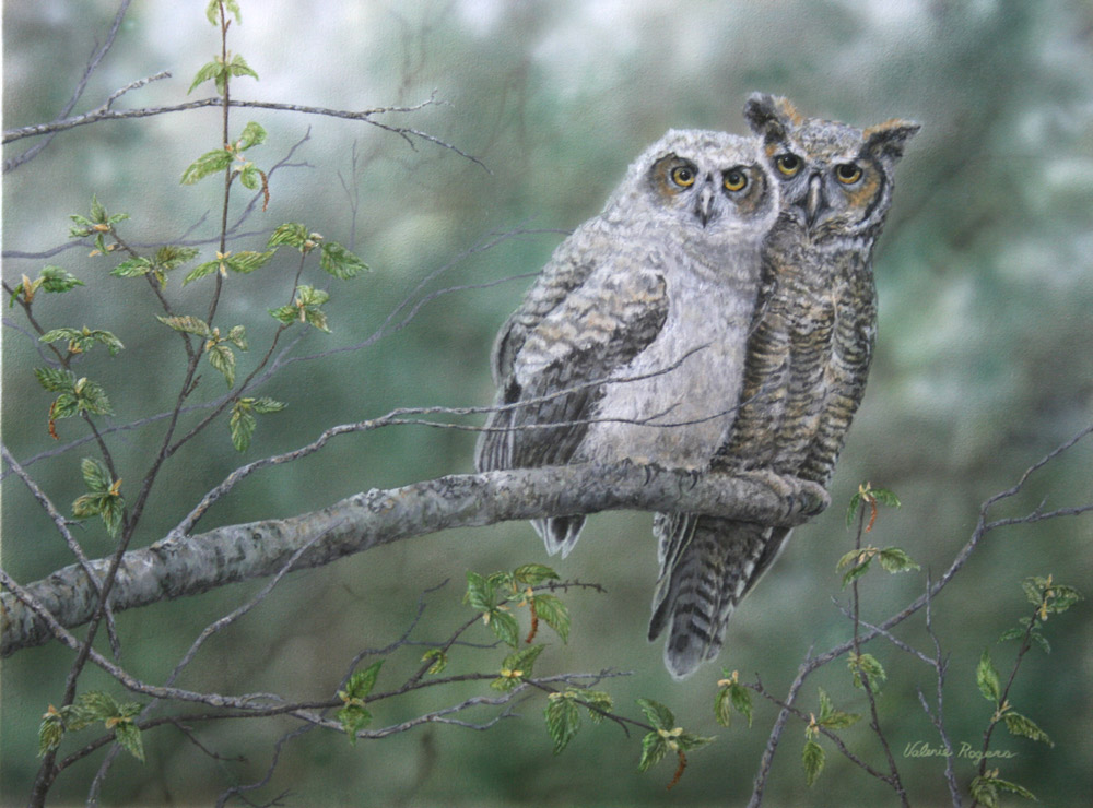 Valerie Rogers' painting of great horned owl