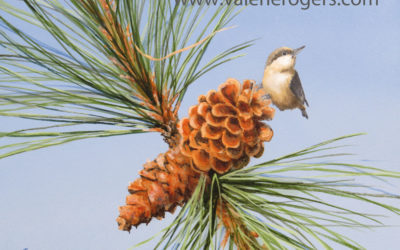 Pinecones and birds
