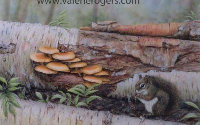 Mushrooms and a Squirrel