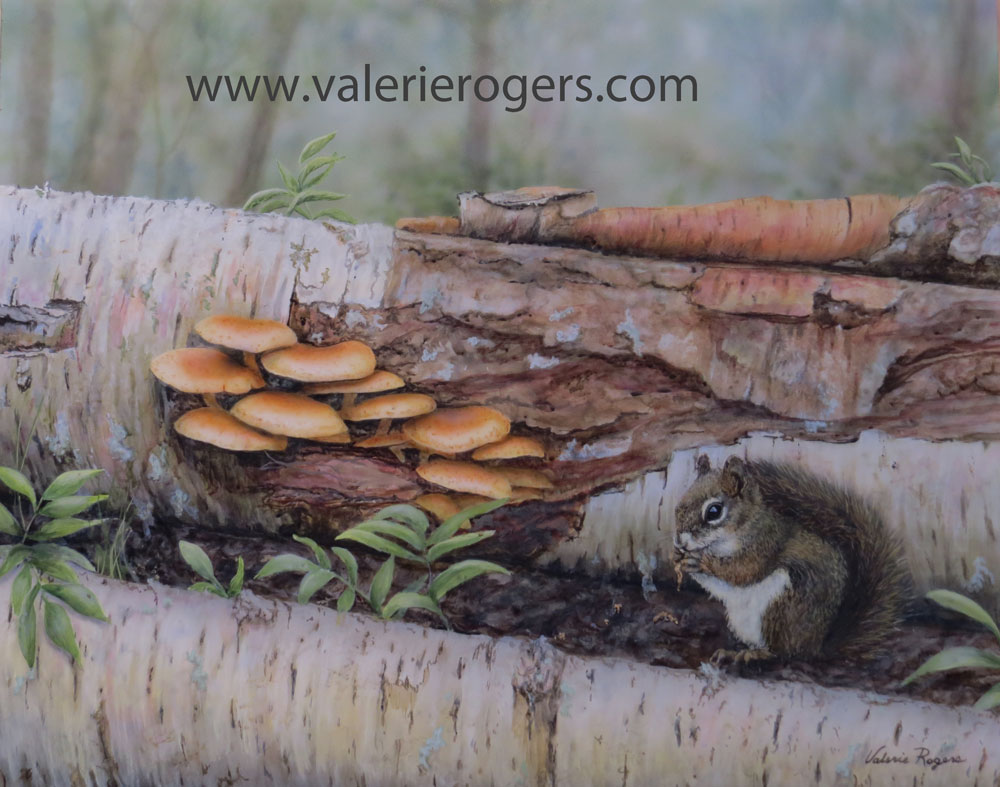 Painting of a squirrel by mushrooms on a log by Valerie Rogers