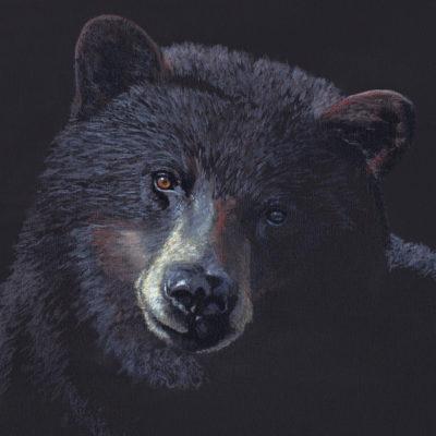 Acrylic painting Black bear Valerie Rogers