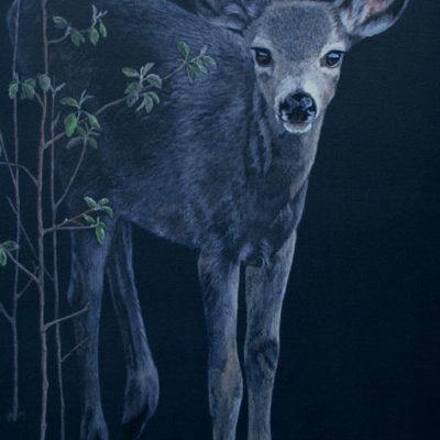 baby deer painting by Valerie Rogers