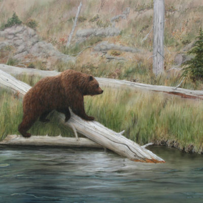 painting of bear by the river