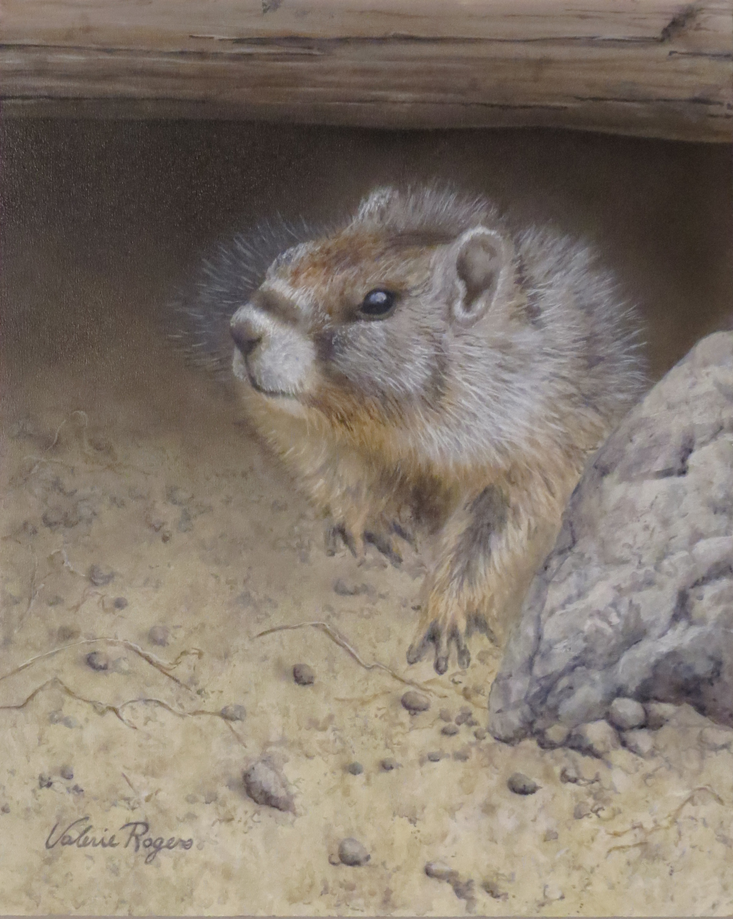 painting of marmot by Valerie Rogers