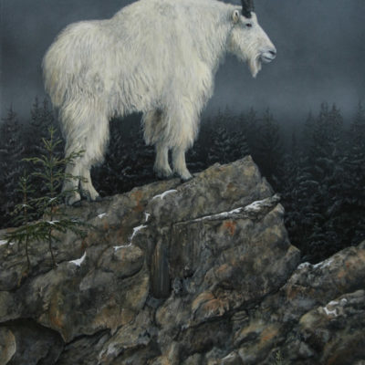 Valerie Rogers' painting of mt goat on rock