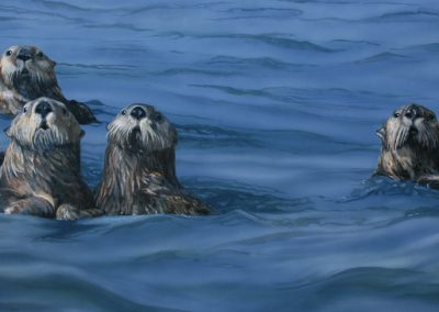 Sea Otter Family