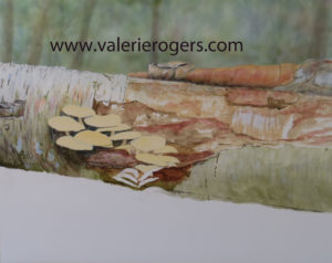 Start of mushroom squirrel painting by Valerie Rogers