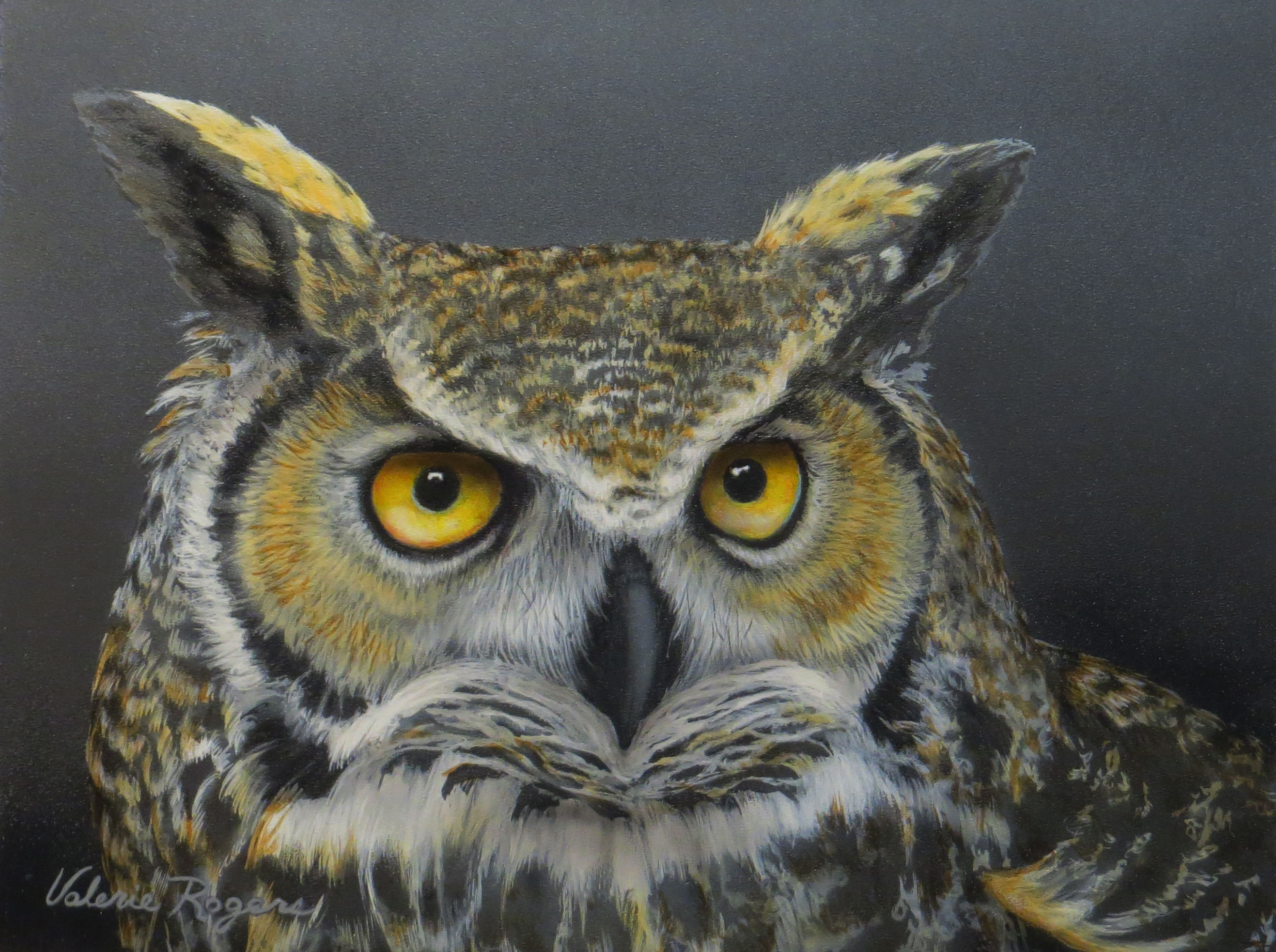 close up of great horned owl by Valerie Rogers