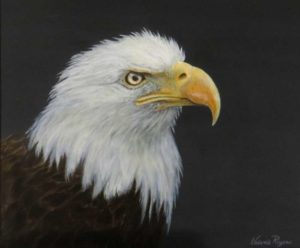 Bald Eagle painting by Valerie Rogers