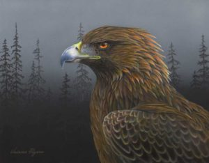 Golden eagle painting by Valerie Rogers